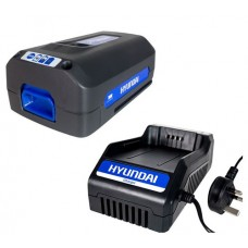 Hyundai 36v Batteries and Chargers
