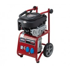 Briggs and Stratton Generator (8)